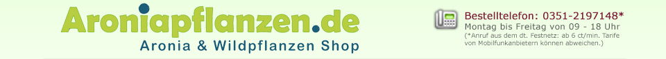 Aroniapflanzen günstig kaufen
